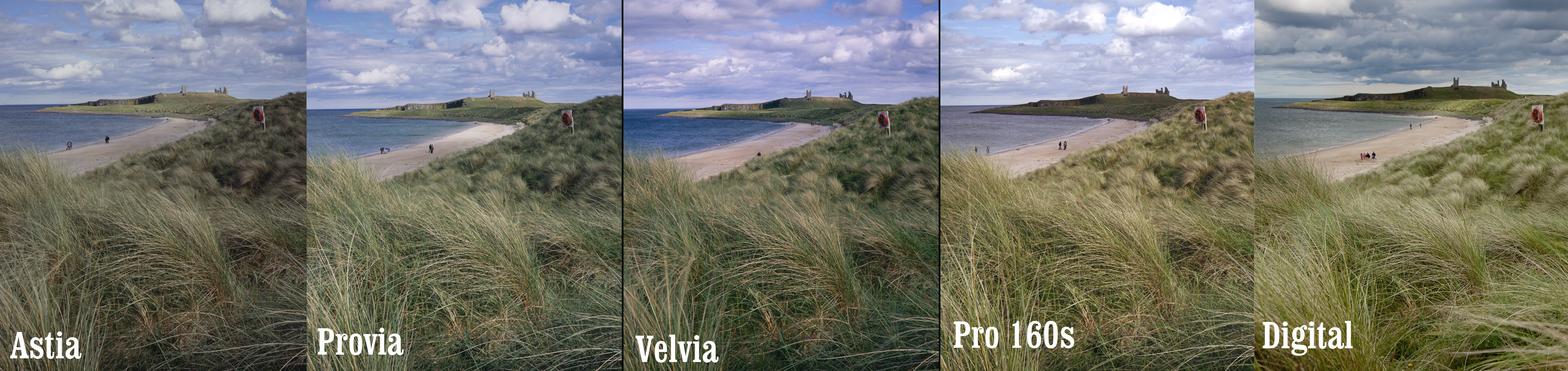 Velvia provia images galleries with a for What is provia